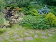 Садовая дорожка из плитняка (камень-пластушка, швы с травой) - 131