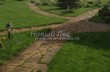 Садовая дорожка из плитняка (камень-пластушка, швы с травой) - 132