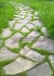 Садовая дорожка из плитняка (камень-пластушка, швы с травой) - 137