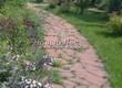 Садовая дорожка из плитняка (камень-пластушка, швы с травой) - 138