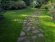 Садовая дорожка из плитняка (камень-пластушка, швы с травой) - 141