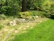 Садовая дорожка из плитняка (камень-пластушка, швы с травой) - 147