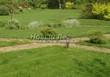Садовая дорожка из плитняка (камень-пластушка, швы с травой) - 149