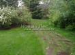 Садовая дорожка из плитняка (камень-пластушка, швы с травой) - 151