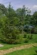 Садовая дорожка из плитняка (камень-пластушка, швы с травой) - 154