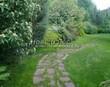 Садовая дорожка из плитняка (камень-пластушка, швы с травой) - 155