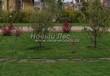 Садовая дорожка из плитняка (камень-пластушка, швы с травой) - 157