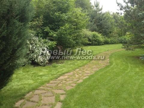 Садовая дорожка из плитняка шириной больше 1 метра позволяет прогуливаться в паре по своему участку
