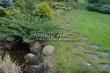 Садовая дорожка из плитняка (камень-пластушка, швы с травой) - 163