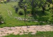 Садовая дорожка из плитняка (камень-пластушка, швы с травой) - 166