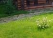 Садовая дорожка из плитняка (камень-пластушка, швы с травой) - 168