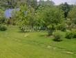 Садовая дорожка из плитняка (камень-пластушка, швы с травой) - 170