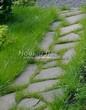 Садовая дорожка из плитняка (камень-пластушка, швы с травой) - 172