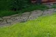 Садовая дорожка из плитняка (камень-пластушка, швы с травой) - 173