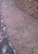 Садовая дорожка из песчаника (швы отсыпаны гравием) - 124