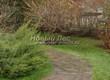 Садовая дорожка из песчаника-пластушки (швы без наполнения) - 105