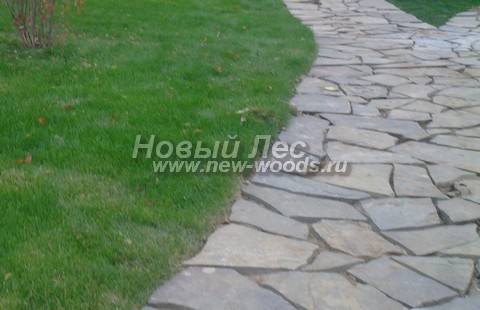 Дорожка из песчаника («камня-пластушки»), в которой швы между камнями оставлены незаполненными