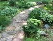 Садовая дорожка из песчаника-пластушки (швы без наполнения) - 114