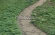 Садовая дорожка из песчаника-пластушки (швы без наполнения) - 127