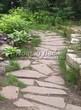 Садовая дорожка из песчаника-пластушки (швы без наполнения) - 131