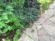Садовая дорожка из песчаника-пластушки (швы без наполнения) - 134