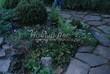 Садовая дорожка из песчаника-пластушки (швы без наполнения) - 135