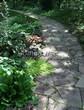 Садовая дорожка из песчаника-пластушки (швы без наполнения) - 138