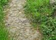 Садовая дорожка из натурального камня (валунов) - 101