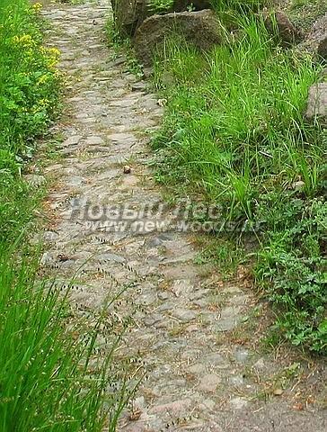 Садовая дорожка из натуральных камней-валунов очень хорошо создаёт на участке эффект ходьбы по естественному скальному (или горному) рельефу