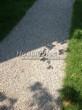 Насыпная садовая дорожка из гранитного отсева - 140