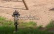 Садовая дорожка (площадка) из песка (отсев, мытый песок) - 101