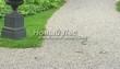 Садовая дорожка из гравия, щебня, гальки. Гравийный отсев - 109