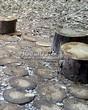 Садовая дорожка из спилов дерева и пеньков - 105
