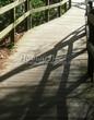 Деревянная садовая дорожка из досок (мостки из дерева) - 105