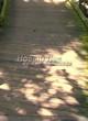 Деревянная садовая дорожка из досок (мостки из дерева) - 108