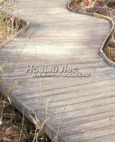 Деревянная дорожка, обустроенная на стандартном каркасе из поперечных досок