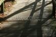 Деревянная садовая дорожка из досок (мостки из дерева) - 119
