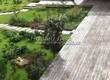 Деревянная садовая дорожка из досок (мостки из дерева) - 120