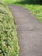 Асфальтовая садовая дорожка (покрытие из асфальта / асфальтобетона) - 108