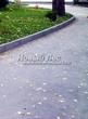 Асфальтовая садовая дорожка (покрытие из асфальта / асфальтобетона) - 109