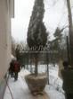 Проект озеленения территории возле загородного дома в Московской области (этап первый - посадка крупномеров сосны обыкновенной): подвоз крупномеров к месту посадки с помощью тележек - начало посадки