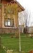 Посадка крупномеров Березы повислой (бородавчатой) Юнга (Betula pendula 'Youngii') - 203