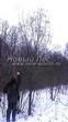 Посадка крупномеров Клена гиннала (Клена приречного, Клена татарского подвида гиннала) (Acer ginnala) (Acer tataricum subsp. ginnala) - 203