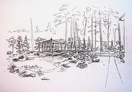 Ландшафтное проектирование: эскизы участка от ландшафтного дизайнера - важные элементы для создания концепции ландшафтного проекта
