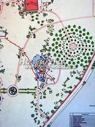 Ландшафтный проект озеленения территории участка (посадка деревьев, кустарников, живой изгороди, перголы, водоем, альпийская горка)