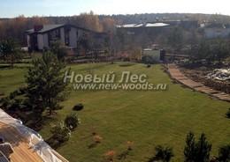 Озеленение участка: зона декоративного газона после работ по укладке