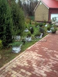 Посадка саженцев декоративных растений в рамках озеленения (до начала работ)