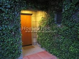 Вертикальное озеленение зоны входа в частный загоородный дом