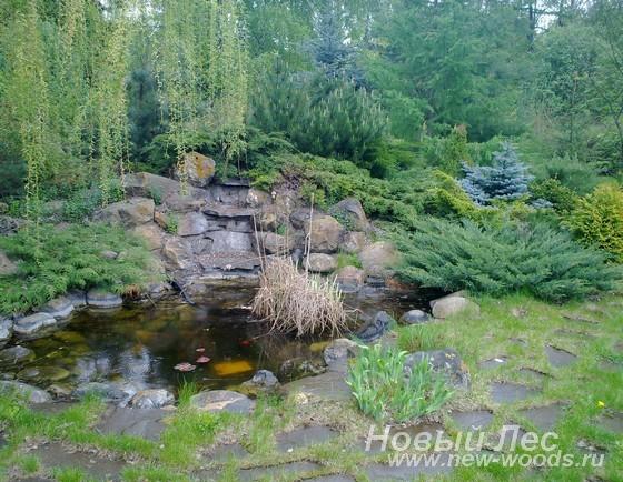 Альпийская горка и декоративный пруд