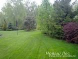 Новый лес (высаженные крупномеры)